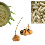 MACA (Macafem for Menopause and Libido)